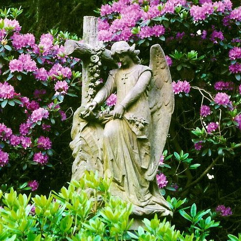 Cemetery Turin Private Tours walks